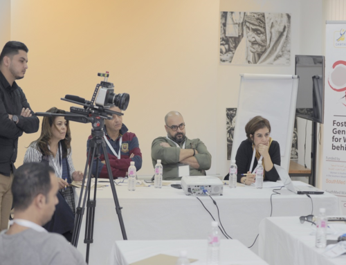 SouthMed WiA Project: Call for External Evaluation